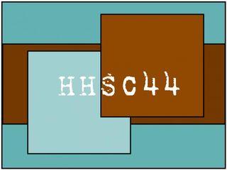 USC HHSC44 2-10-11