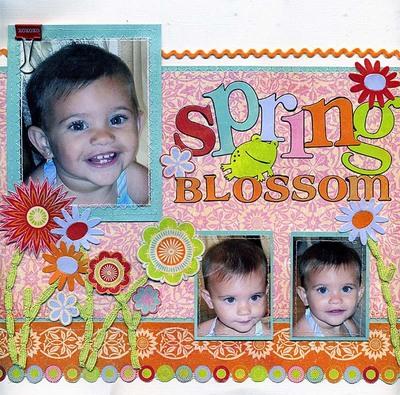 Spring_blossom_edited1